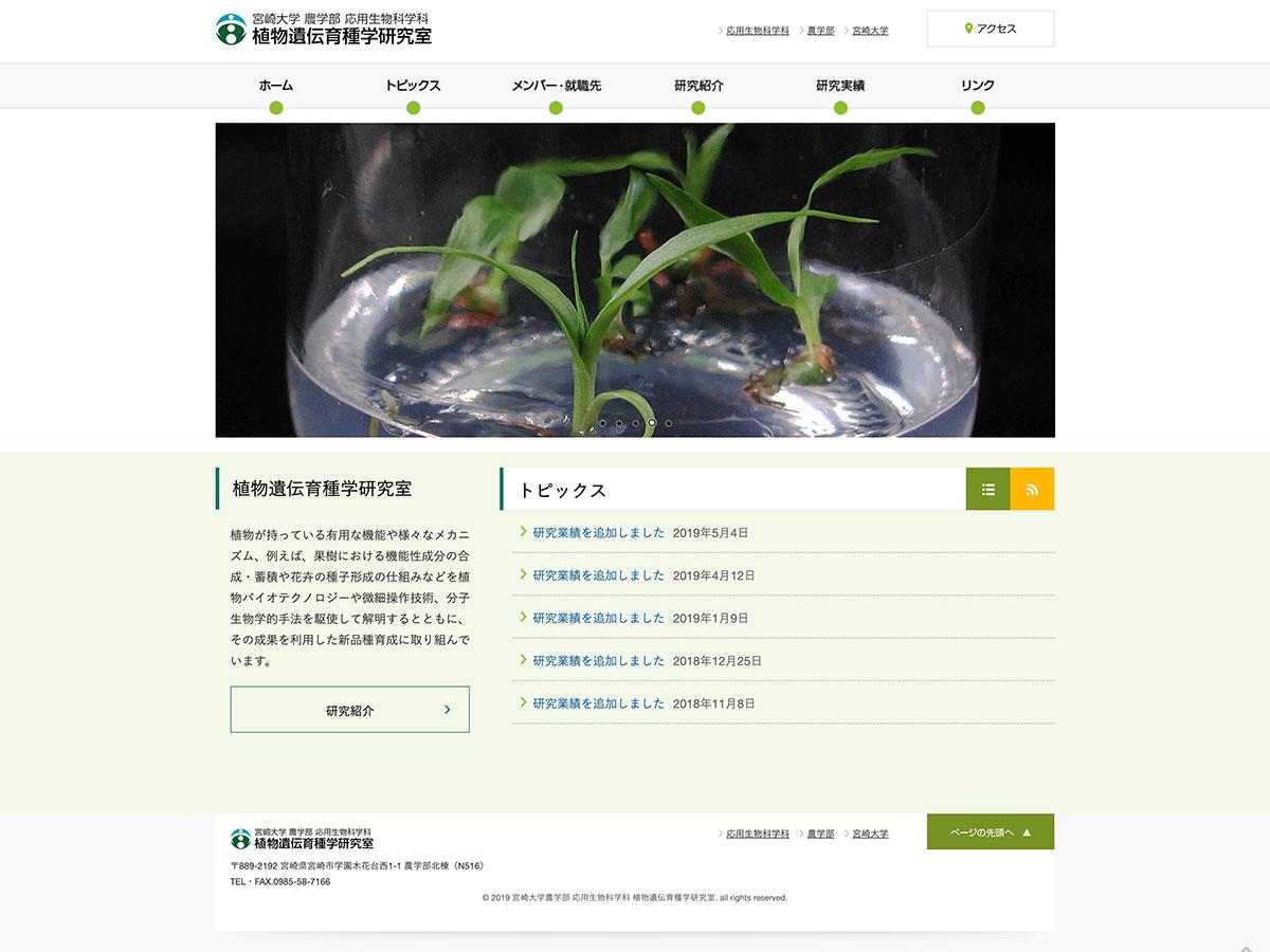 宮崎大学農学部 応用生物科学科 植物遺伝育種学研究室